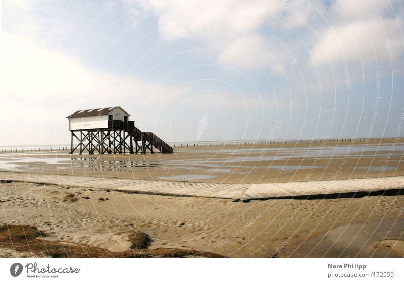 Haus an der Nordsee harmonisch Zufriedenheit ruhig Strand Meer Natur Landschaft Urelemente Erde Sand Luft Wasser Himmel Wolken Schönes Wetter Küste
