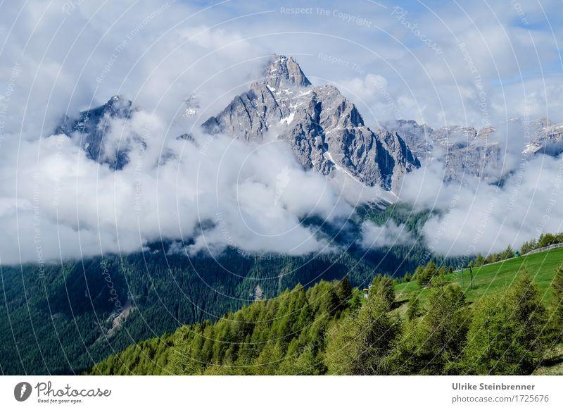 Sextener Dolomiten 2 Himmel Natur Ferien & Urlaub & Reisen Pflanze Sommer Baum Landschaft Wolken Wald Berge u. Gebirge Umwelt natürlich Gras Felsen Tourismus