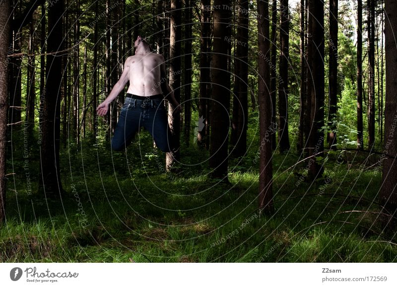 Beam me up, Scotty Mensch Natur Jugendliche Erwachsene Einsamkeit Wald dunkel Umwelt Freiheit Bewegung fliegen maskulin Verkehr Energiewirtschaft verrückt