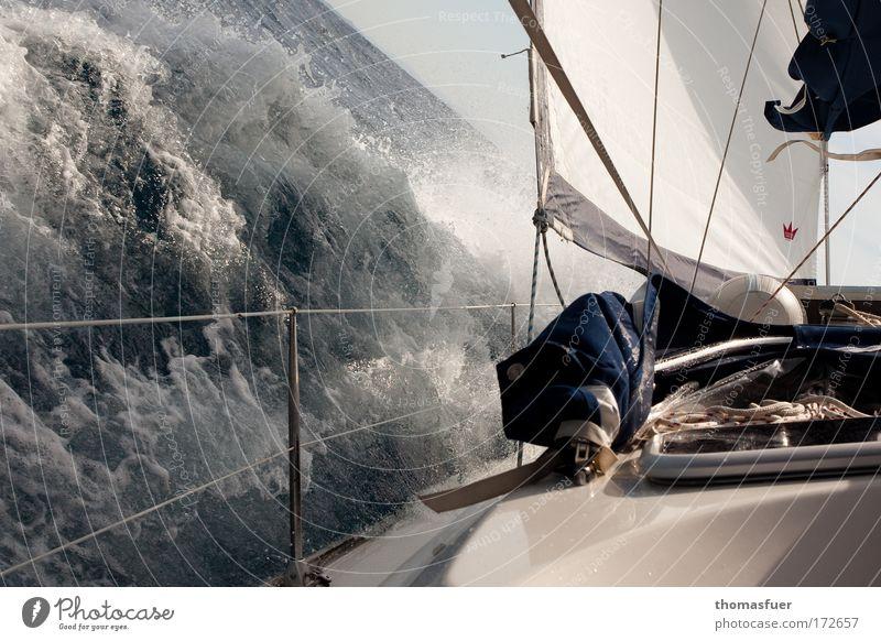 Sailing oder Rumregatta Meer blau Sommer Freude Ferien & Urlaub & Reisen Wasserfahrzeug Sport Freiheit Kraft Wellen Wind Abenteuer Freizeit & Hobby Mut Segeln