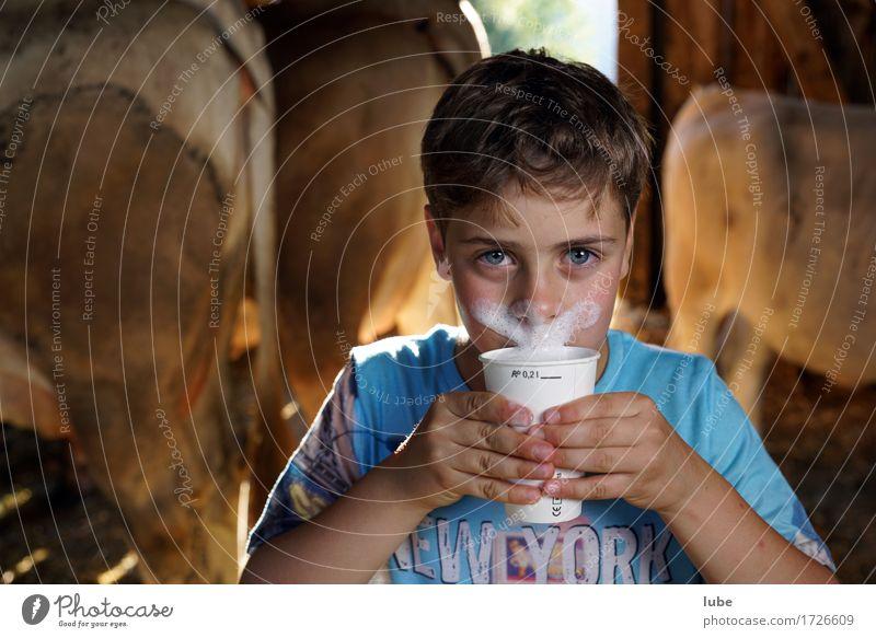 Milchtrinker Milcherzeugnisse Getränk trinken Erfrischungsgetränk Becher Milchschaum Kuhstall Bart Milchbecher Oberlippenbart Farbfoto Blick in die Kamera