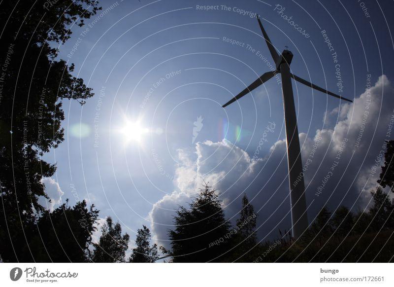 industria pura Himmel Baum Sonne Wolken Wind Umwelt modern Energiewirtschaft Technik & Technologie Wandel & Veränderung Klima Sauberkeit rein Wissenschaften Windkraftanlage Sonnenenergie