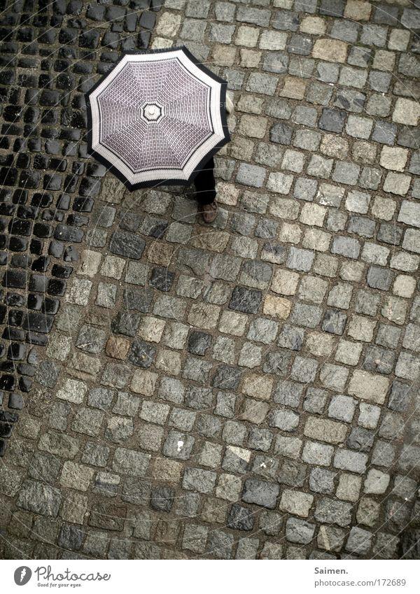 Das Regen-Chameleon Gedeckte Farben Außenaufnahme Tag Fuß Bewegung gehen laufen Schirm Regenschirm Wetter nass kalt Pflastersteine Straße Wege & Pfade stoppen
