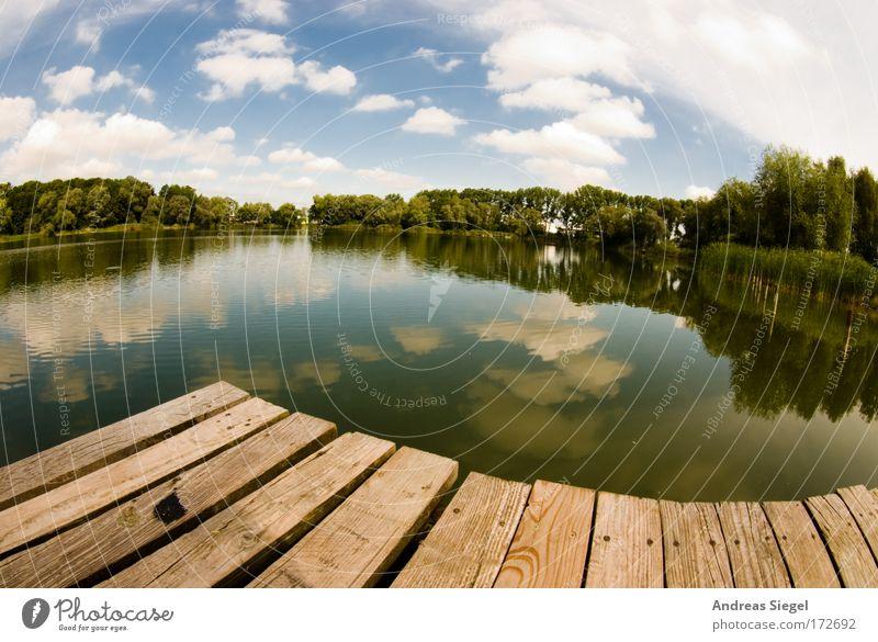 Schwung am See Farbfoto Außenaufnahme Menschenleer Tag Licht Reflexion & Spiegelung Sonnenlicht Fischauge Freizeit & Hobby Ferien & Urlaub & Reisen Freiheit