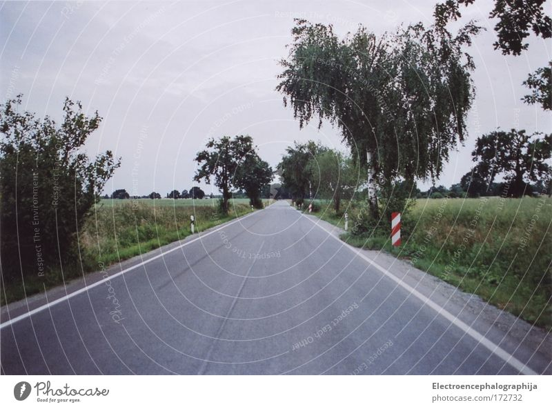 Landeflug Himmel grün rot Sommer Wolken Einsamkeit Straße kalt grau Wege & Pfade Landschaft hell Stimmung Feld Umwelt Horizont