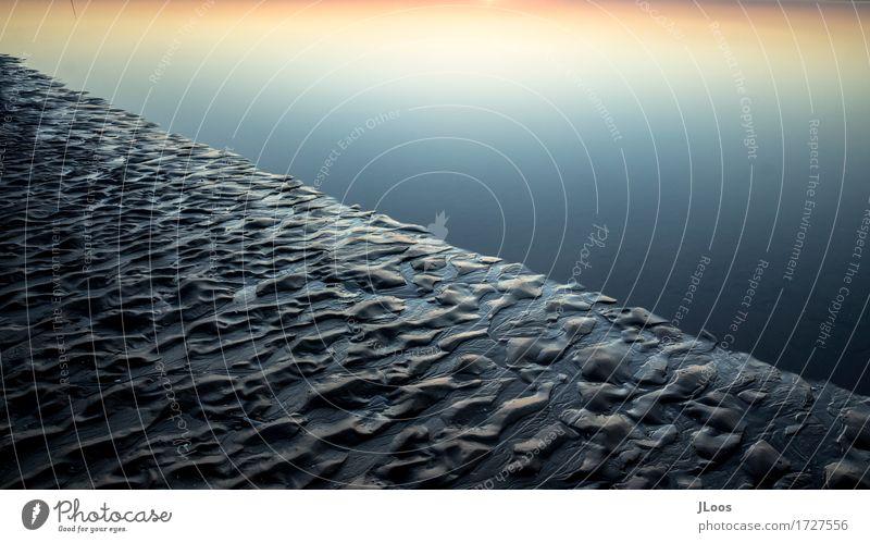 Ripples Umwelt Natur Erde Sand Wasser Sommer Klima Schönes Wetter Küste Seeufer Strand Nordsee Meer Insel Amrum Deutschland Europa Menschenleer Stein Netz