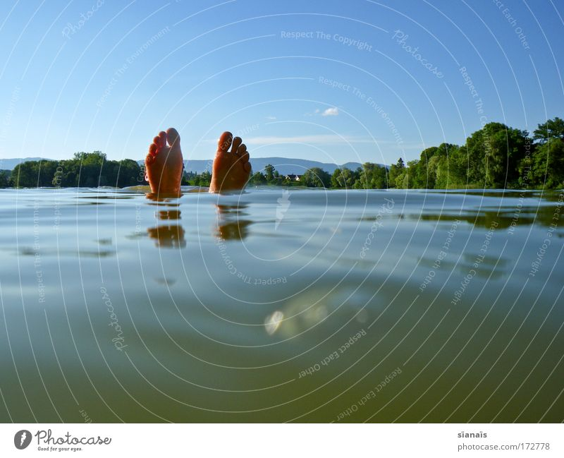 flossen hoch! Mensch Natur Ferien & Urlaub & Reisen Mann blau Wasser Sommer Erholung ruhig Wald Erwachsene lustig Schwimmen & Baden See Fuß maskulin