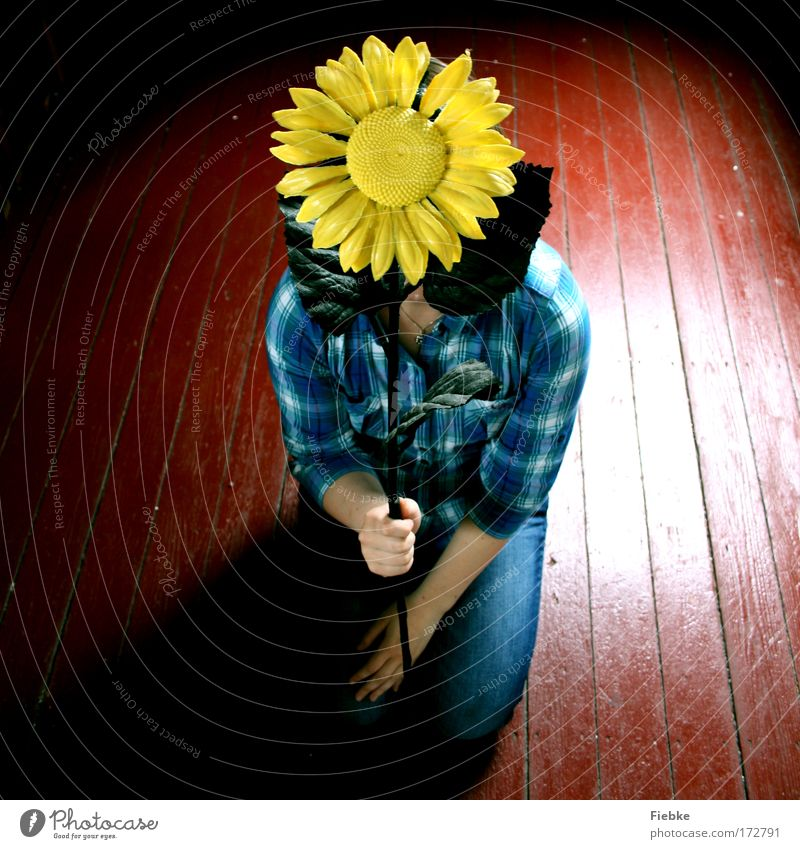 PlastePlume Mensch Natur blau Pflanze Blume Freude Einsamkeit Farbe gelb Umwelt Spielen Holz Garten Blüte natürlich außergewöhnlich