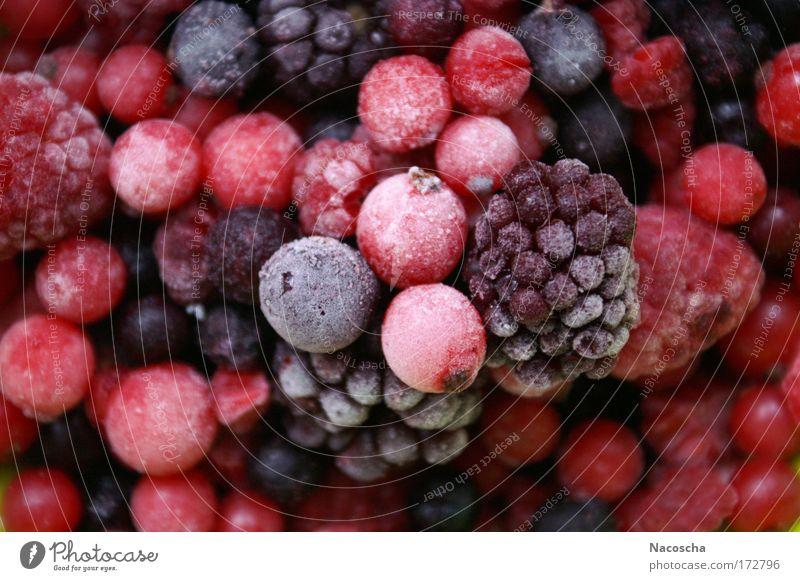 Frosty Beer schön rot kalt Gesundheit rosa Frucht frisch Ernährung süß Wellness genießen lecker saftig sauer