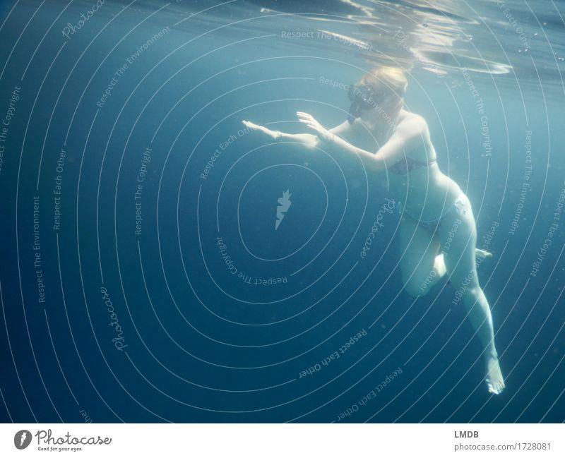 Herantasten an die Unterwasserwelt Körper sportlich Fitness Wellness Schwimmen & Baden Sport tauchen Mensch feminin Junge Frau Jugendliche Erwachsene 1