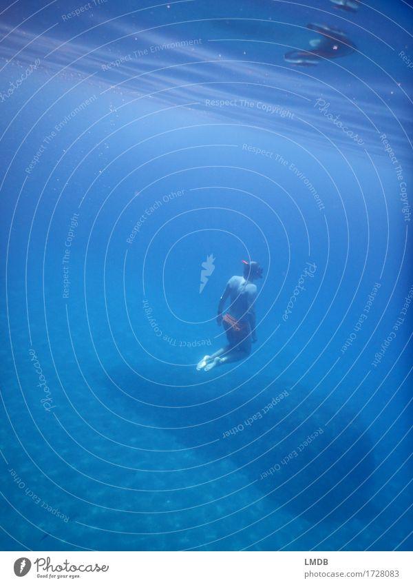 abtauchen... Mensch Mann blau Wasser Meer ruhig Erwachsene Sport Schwimmen & Baden maskulin Körper nass Unendlichkeit sportlich Vertrauen tauchen