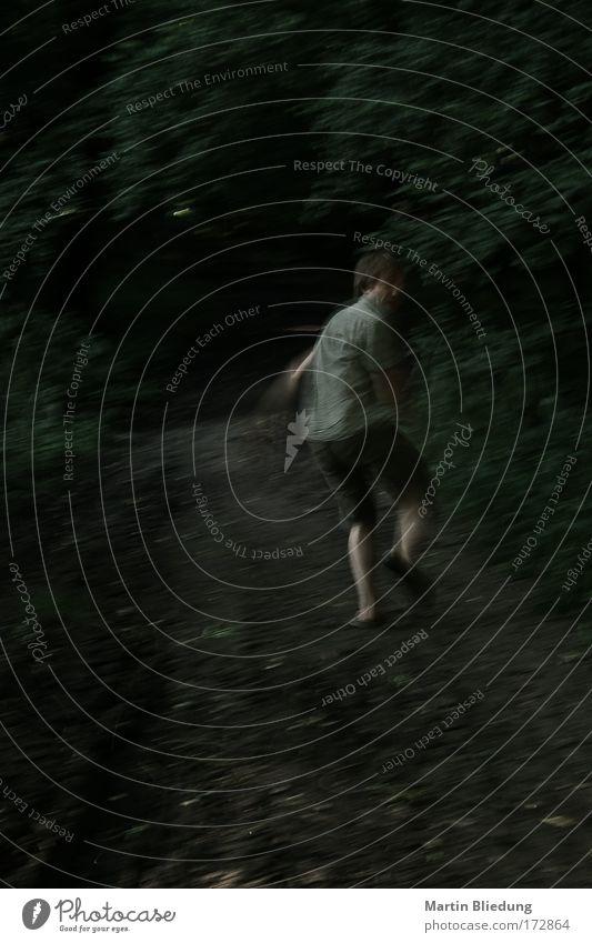 Fluchtversuch#3 Mensch Jugendliche grün schwarz Wald Erwachsene dunkel grau träumen 18-30 Jahre braun außergewöhnlich Angst laufen maskulin Geschwindigkeit