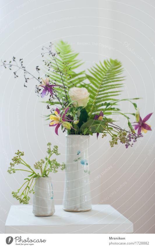 Sommer Sträucher Farn Freundschaft Vase Keramik Tontopf Blumenstrauß Rose Farbe Akelei Muttertag Geburtstag gepflückt Geschenk Dekoration & Verzierung
