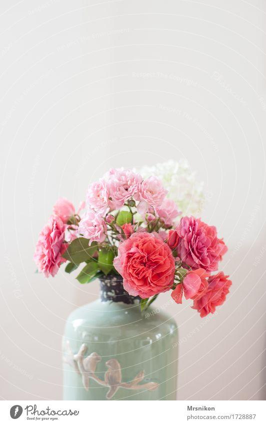 Rosen Pflanze Blume Blatt Blüte leuchten Vase Blumenstrauß Muttertag Geburtstag schenken rosa rosé Keramik schön lieblich sommerlich gepflückt Farbfoto