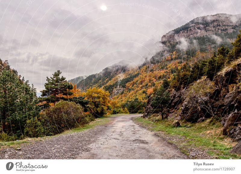 Herbst in den Pyrenäen Himmel Natur blau Farbe schön grün Landschaft rot Wolken Blatt Wald Berge u. Gebirge Umwelt natürlich Park