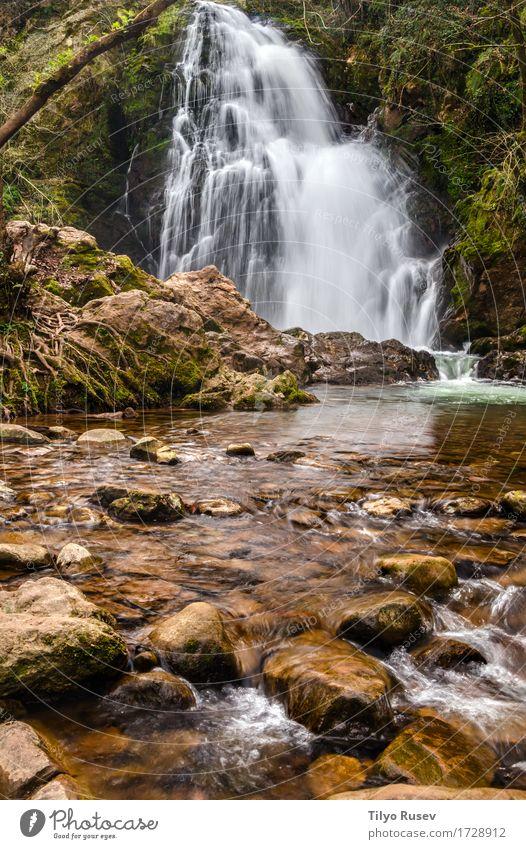 Schlucken Ferien & Urlaub & Reisen Tourismus Natur Baum Park Felsen See Bach Fluss Stein grün Kaskade Spanien Wasser Navarra Seide legen Basken strömen Abschaum