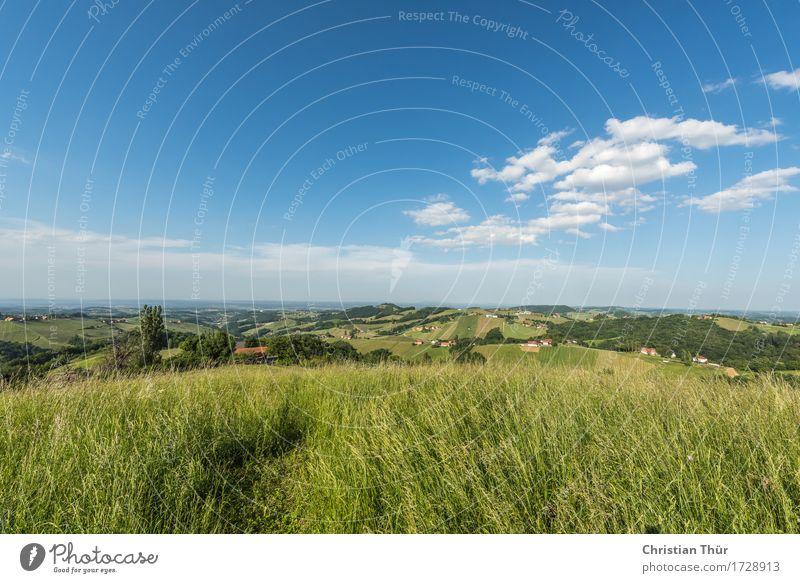 Sommerfrische Himmel Natur Ferien & Urlaub & Reisen Landschaft Erholung ruhig Ferne Berge u. Gebirge Umwelt Leben Wiese Gras Glück Freiheit Tourismus