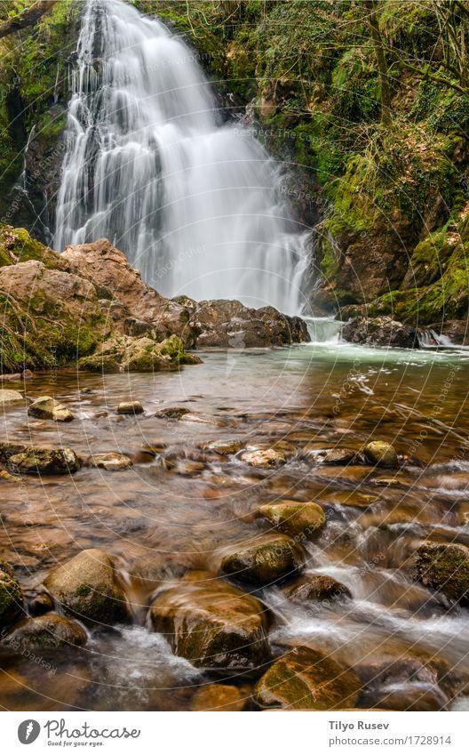 Natur Ferien & Urlaub & Reisen grün Baum Stein See Felsen Tourismus Park Fluss Bach