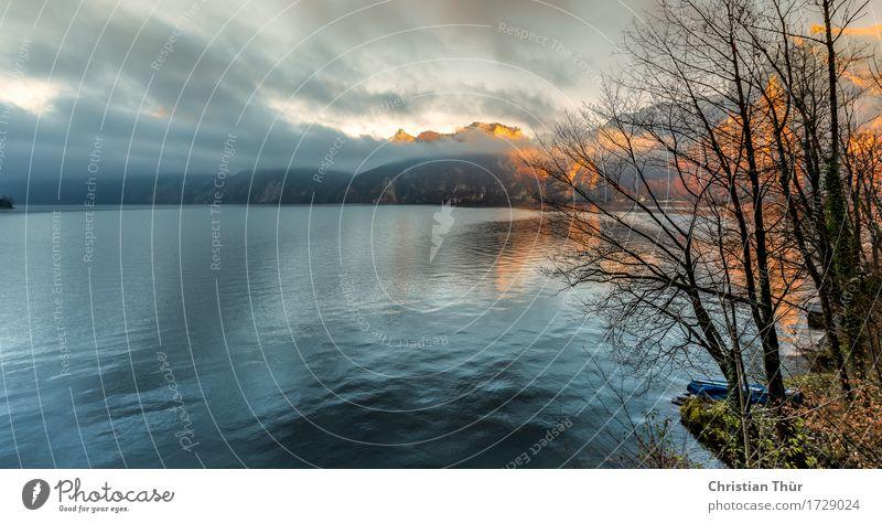 Seeblick Himmel Natur Ferien & Urlaub & Reisen Wasser Baum Landschaft Erholung Wolken Winter Berge u. Gebirge Umwelt Leben Gefühle Gras Schwimmen & Baden