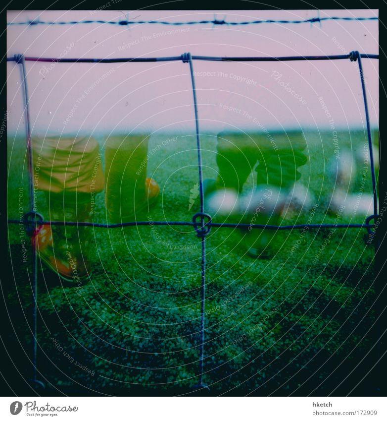 Siebenmeilenstiefel Farbfoto Außenaufnahme Experiment Lomografie Sommerurlaub Mädchen Kindheit 2 Mensch 3-8 Jahre 8-13 Jahre Himmel Wiese Gummistiefel Schaf