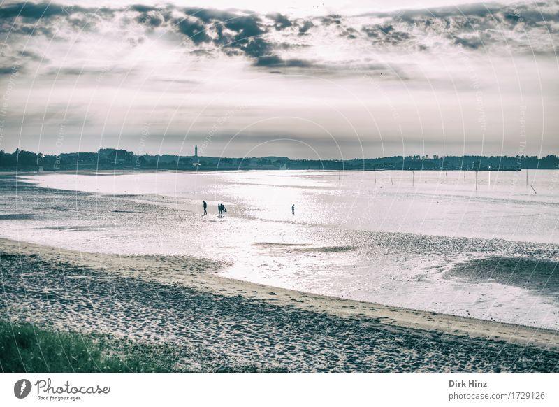 Wittdün / Amrum Mensch Natur Ferien & Urlaub & Reisen Sommer Sonne Landschaft Meer Ferne Strand Umwelt Frühling Küste Freiheit Tourismus Horizont Wellen