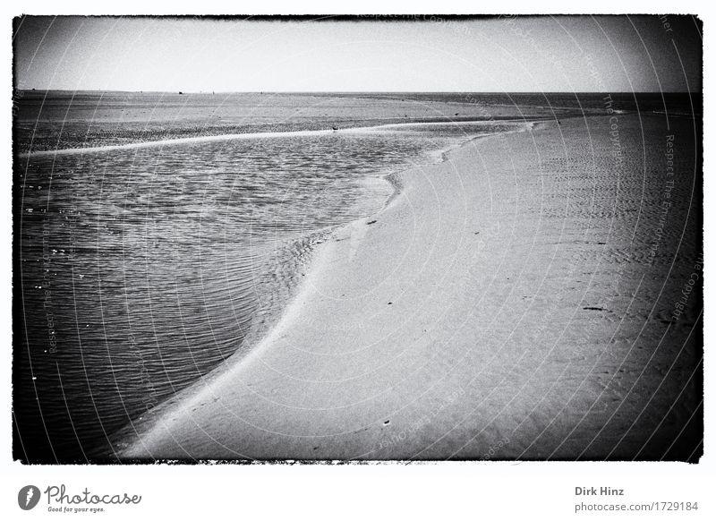 Priel bei Wittdün /Amrum Ferien & Urlaub & Reisen Sommer Wasser Meer Ferne Strand Umwelt Freiheit Stimmung Sand Tourismus Horizont wandern Ausflug Perspektive