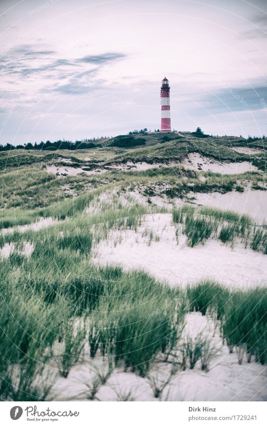 Leuchtturm Wittdün / Amrum Ferien & Urlaub & Reisen Tourismus Ausflug Ferne Freiheit Umwelt Natur Landschaft Himmel Horizont Pflanze Küste Nordsee Meer Insel
