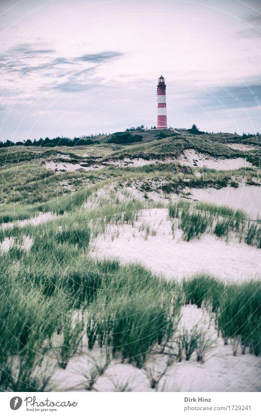 Leuchtturm Wittdün / Amrum Himmel Natur Ferien & Urlaub & Reisen Pflanze Landschaft Meer Erholung Ferne Umwelt Küste Freiheit Tourismus Horizont Ausflug Insel