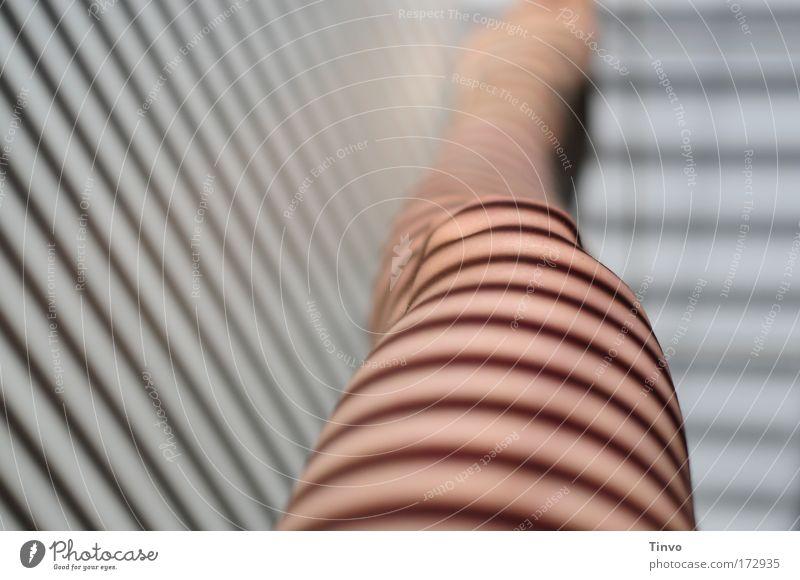 Umherstreifen Frau Erwachsene feminin Beine Fuß Linie Haut exotisch gestreift Barfuß Knie Zebra Zebrastreifen Schatten