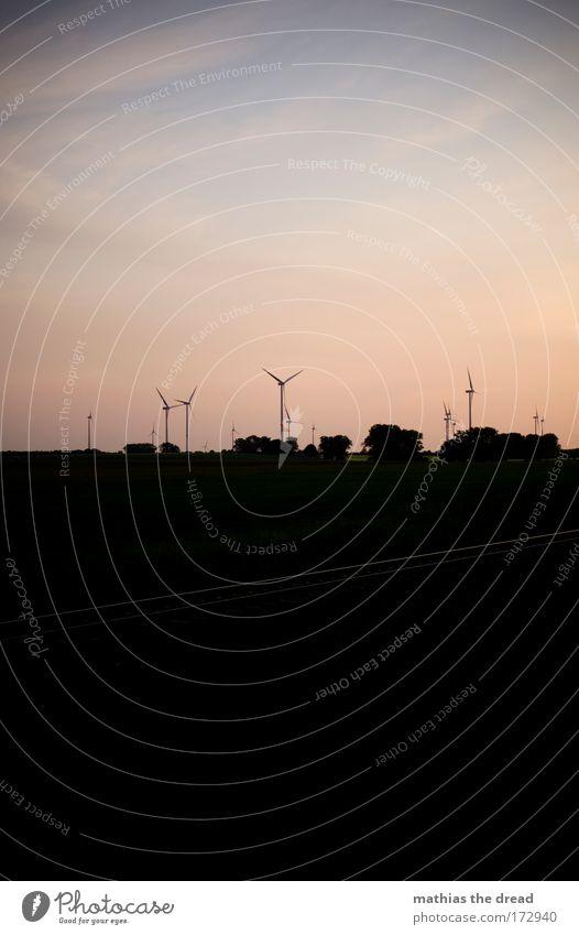 REISEEINDRÜCKE Himmel Natur Baum Pflanze Sommer Wolken ruhig Umwelt Landschaft Horizont Zufriedenheit Feld Energiewirtschaft Schönes Wetter Sehnsucht Gleise