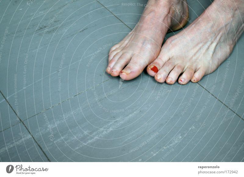 kalte füße rot Erwachsene Leben grau Fuß Tierfuß stehen Boden Bodenbelag berühren Barfuß Zehen lackiert Zehennagel