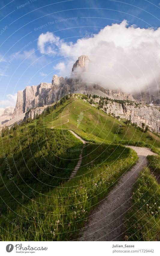 Schmaler Grat Umwelt Natur Landschaft Urelemente Himmel Wolken Sonne Sonnenlicht Sommer Schönes Wetter Pflanze Blume Gras Felsen Alpen Berge u. Gebirge Gipfel