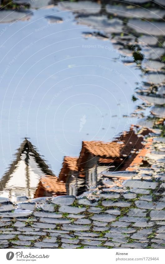 AST 9 | aus einer anderen Welt II Wasser Wassertropfen Himmel Wolkenloser Himmel Schönes Wetter Kleinstadt Altstadt Haus Traumhaus Dach Dachgiebel Fachwerkhaus
