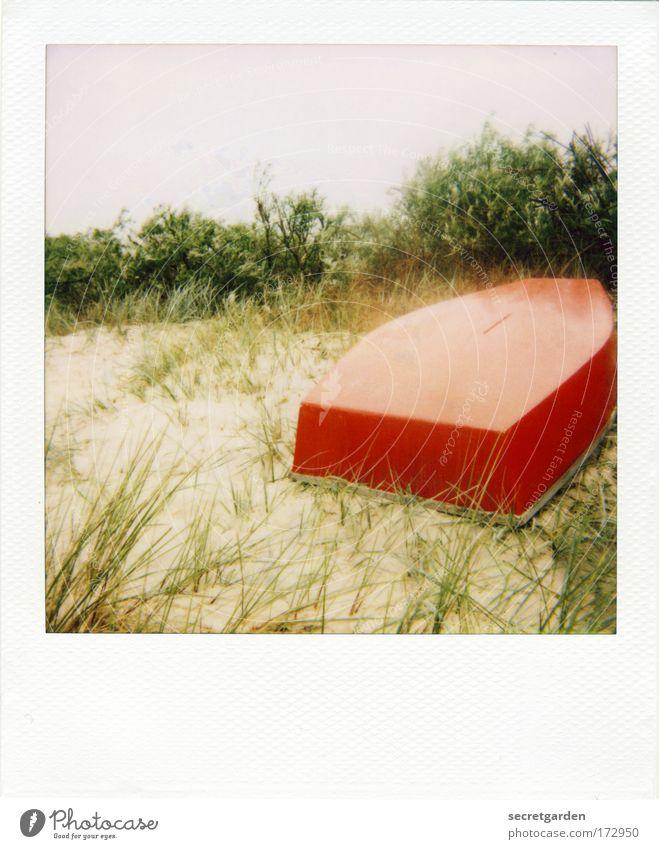 [KI09.1] ich hab ein knallrotes gummiboot..... Natur Pflanze rot Gras Sand Landschaft Umwelt Sträucher Wolkenloser Himmel