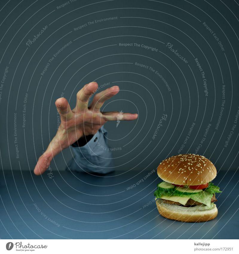 take away Mensch Hand Essen Ernährung Arme Lebensmittel Lifestyle genießen Gemüse Übergewicht Amerika Fett Fleisch Interesse Brötchen Gurke