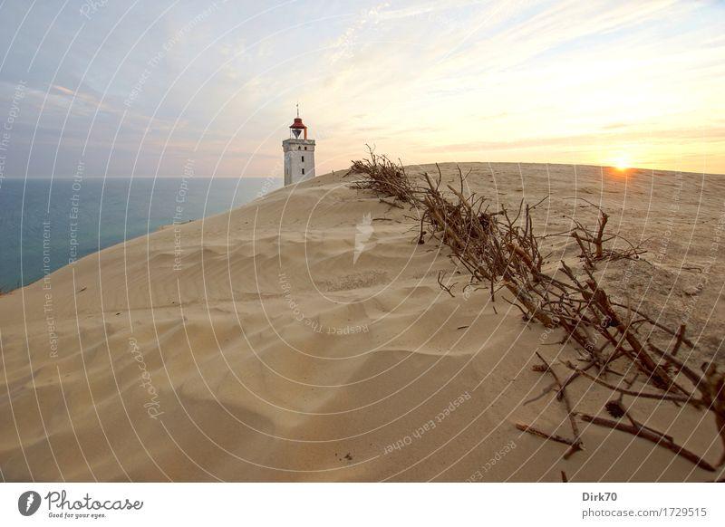 ... and the sun also rises ... Sommer Sommerurlaub Natur Landschaft Sand Himmel Sonne Sonnenaufgang Sonnenuntergang Sonnenlicht Schönes Wetter Zweige u. Äste