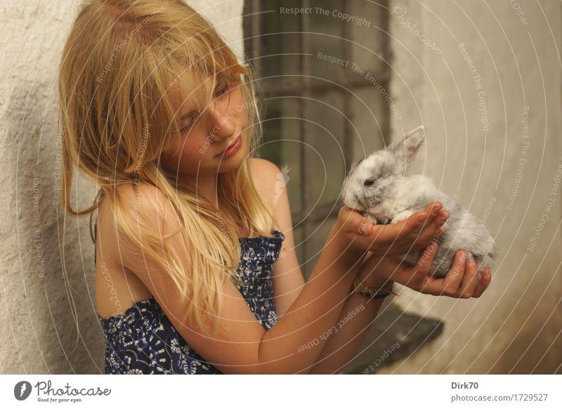In tender hands. Mensch Kind Sommer schön Tier Mädchen Fenster Tierjunges Wand Mauer Glück klein blond Kindheit Lächeln beobachten