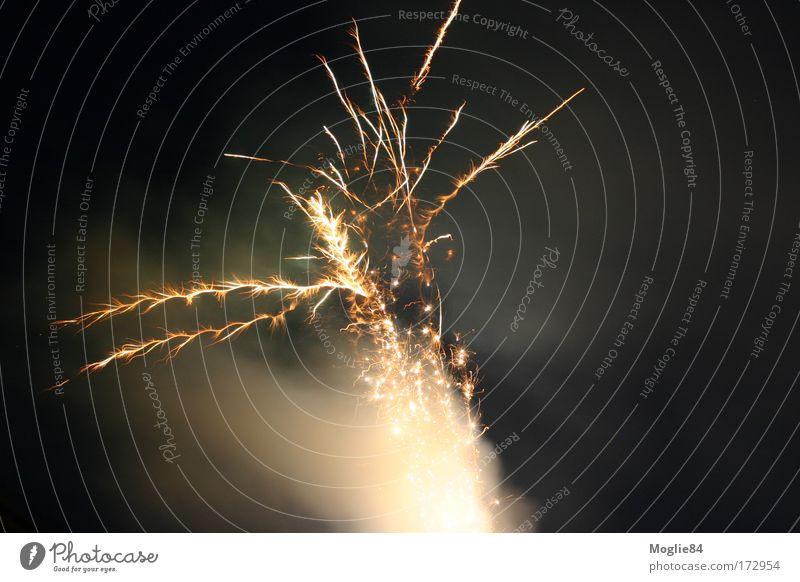 Feuerwerk Bewegung Feste & Feiern gold Silvester u. Neujahr Lichtspiel Funken Explosion explodieren explosiv Pyrotechnik Vor dunklem Hintergrund