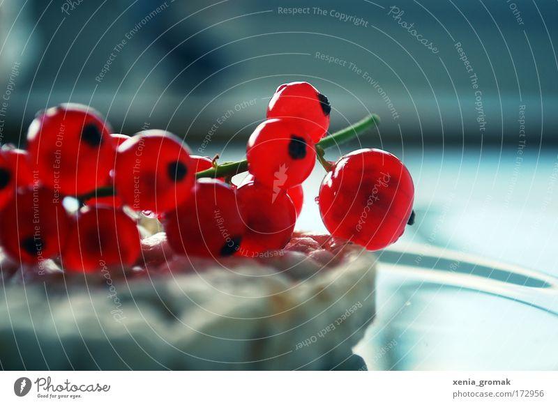 Summertime rot Erholung kalt Frucht ästhetisch süß dünn genießen lecker