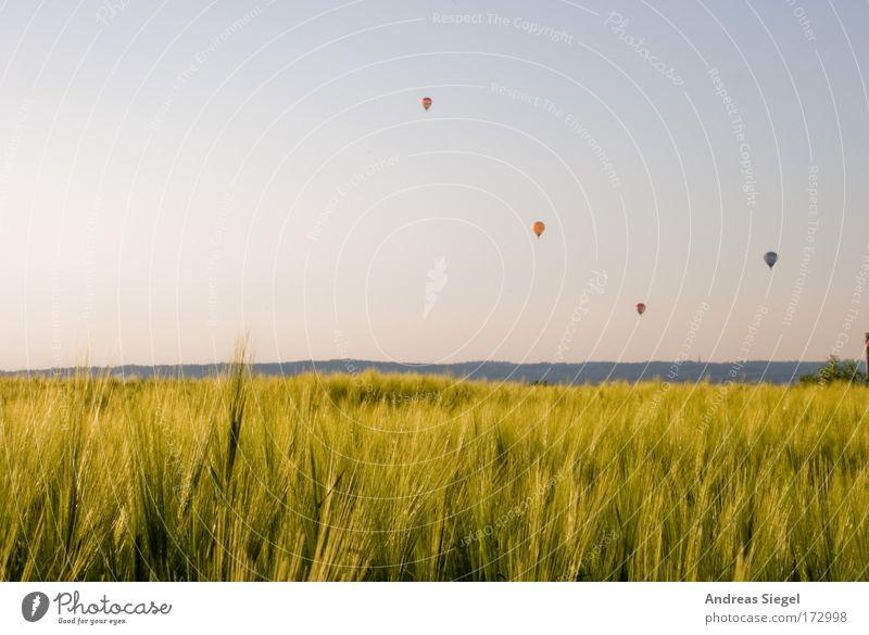 Immer höher, immer weiter Farbfoto Außenaufnahme Menschenleer Textfreiraum oben Tag Abend Lichterscheinung Sonnenlicht Lifestyle Freude Freizeit & Hobby Ballone