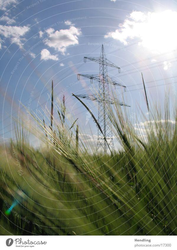 Der Mast steht stramm Strommast die Sonne strahlt der Wind weht das Feld wird durchgeschüttelt