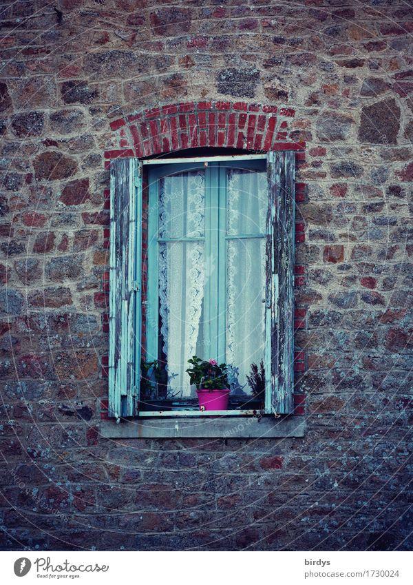 Zeitfenster Häusliches Leben Topfpflanze Altstadt Haus Natursteinfassade Fassade Fenster Fensterladen Blumentopf alt ästhetisch authentisch Originalität positiv