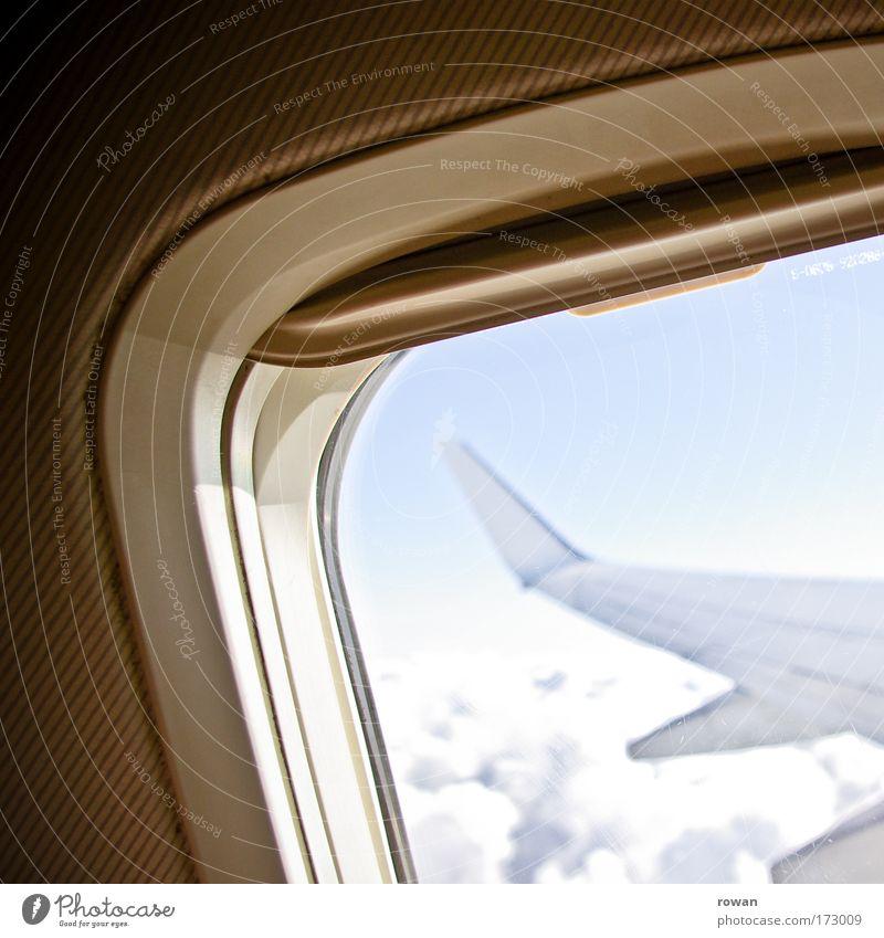 über den wolken Farbfoto Gedeckte Farben Innenaufnahme Tag Luftverkehr Flugzeug Passagierflugzeug im Flugzeug Flugzeugausblick fliegen Freiheit