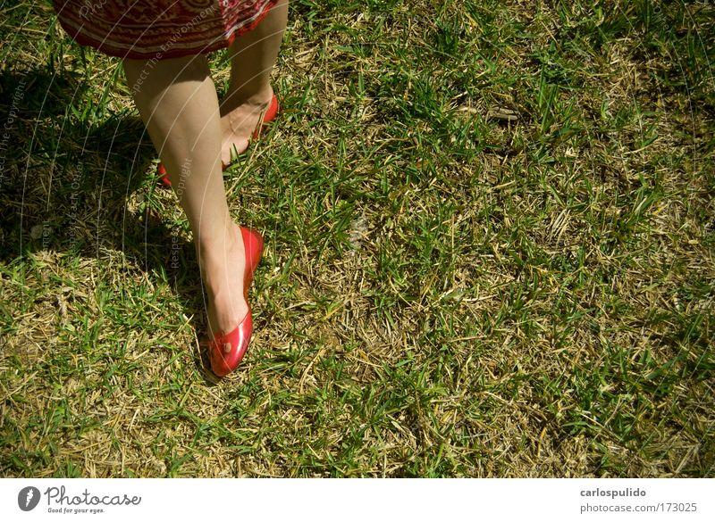 rot Erwachsene Farbe feminin Beine Fuß Schuhe Feld Rasen 18-30 Jahre Junge Frau