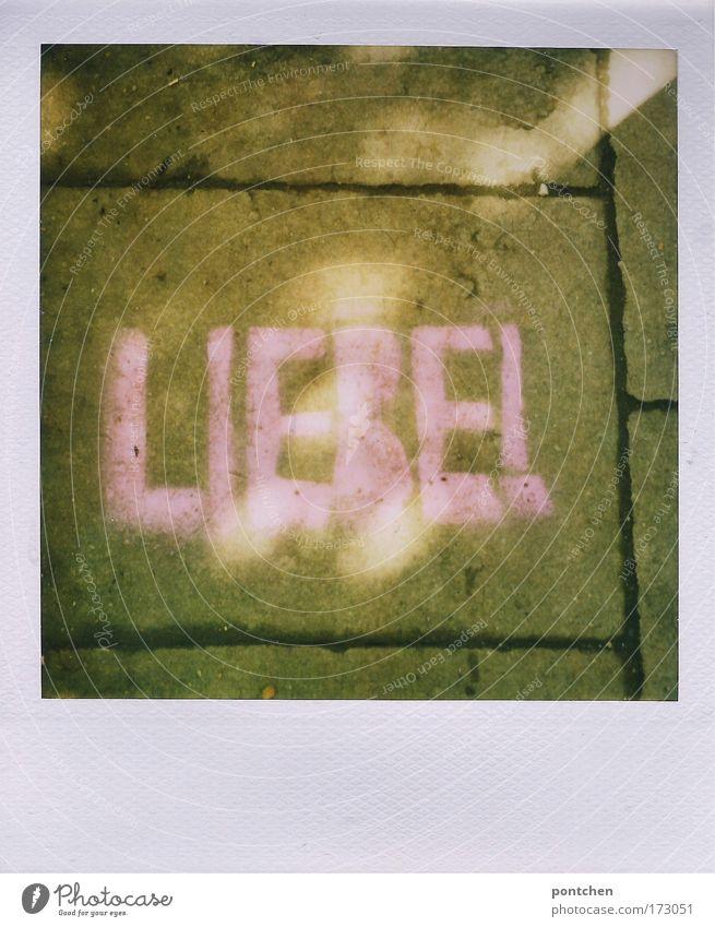 Polaroidliebe Liebe Straße Graffiti Gefühle Wege & Pfade Stein rosa Schriftzeichen Romantik schreiben Zeichen Verliebtheit Kreide Wort Pflastersteine