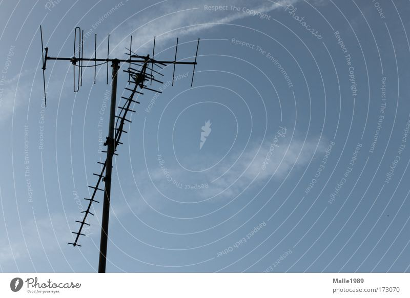 Perfekter Empfang Farbfoto Außenaufnahme Menschenleer Tag Fernseher Technik & Technologie High-Tech Telekommunikation Informationstechnologie Medien Fernsehen