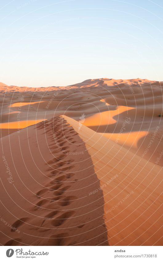 Sahara I Natur Ferien & Urlaub & Reisen Sommer Sonne Landschaft Einsamkeit ruhig Ferne Wärme Freiheit Sand träumen frei Ausflug Abenteuer Hügel
