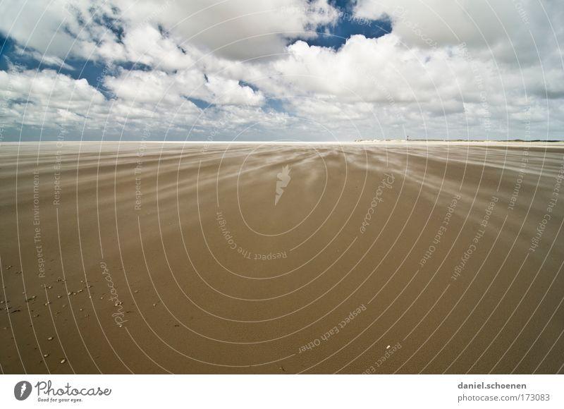 immer dieser Wind ! Farbfoto Menschenleer Textfreiraum unten Textfreiraum Mitte Sonnenlicht Weitwinkel Natur Landschaft Sand Himmel Wolken Sturm Küste Strand