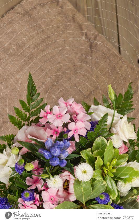Blumenstrauß Blüte Phlox rosa Farn Schleierkraut Rose Veronica Gamander-Ehrenpreis ehrenpreis Geburtstag Valentinstag Vatertag Geschenk Freisteller grün blau
