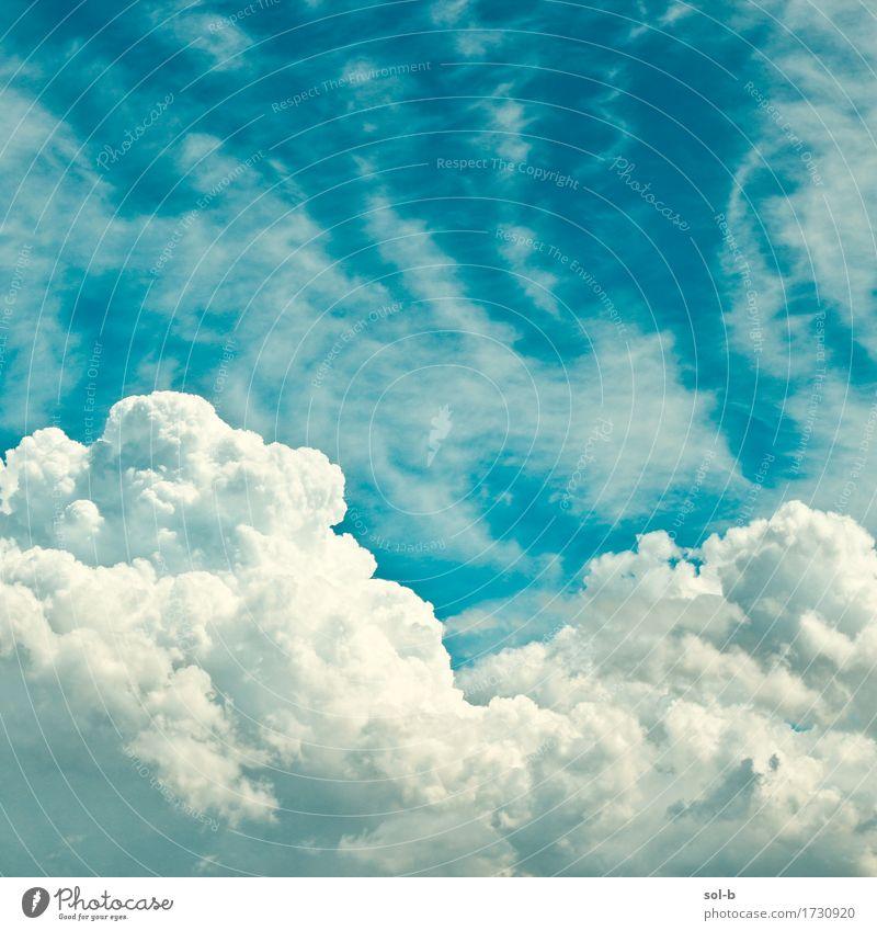 dnt vn ntc Wellness harmonisch Sinnesorgane Meditation Umwelt Natur Luft Himmel Wolken Klima Wetter Schönes Wetter frisch gigantisch groß oben wild blau